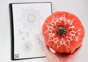 Dig no carve pumpkins? Love boho? These henna doodled no carve pumpkins are totally for you this fall!