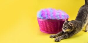 Repurpose those old Easter baskets! Use whatever fabric you already have on hand and an old pillow for an Easter basket cat bed your kitties will love!