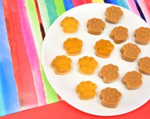 Finish up leftover broth and make the pups a special treat for peanut butter lovers (2 birds, 1 stone!). These peanut butter gummies are so easy & unique!