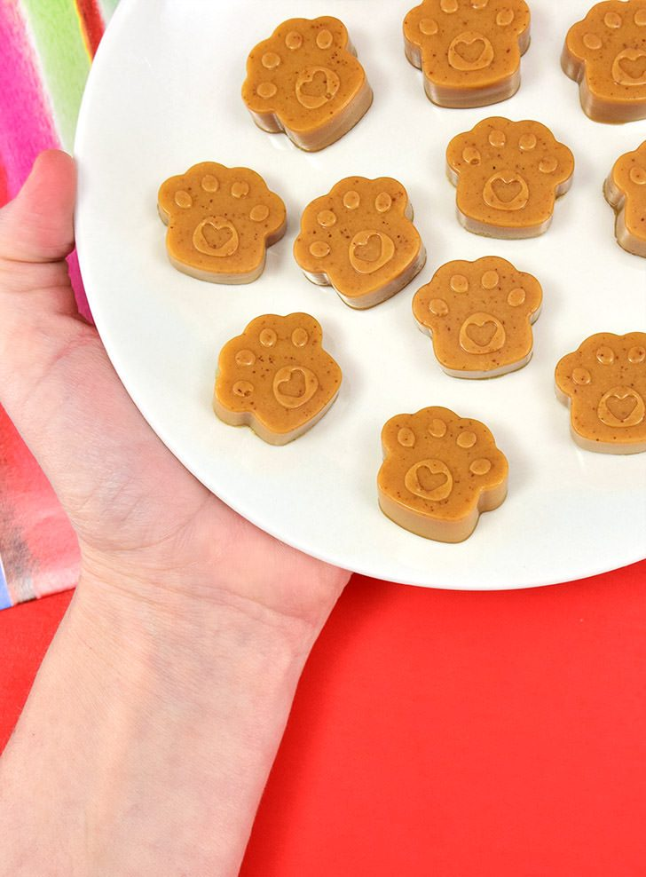 Peanut Butter Gummies Homemade Dog Treats