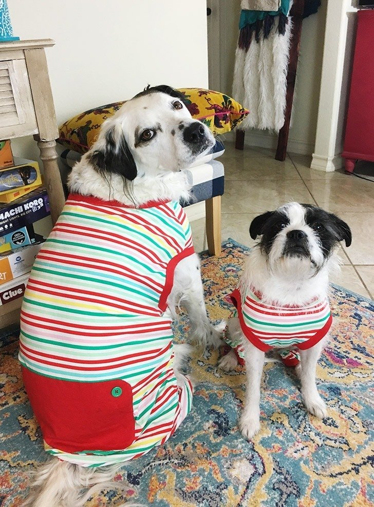 Ollie and Carly are ready for Christmas with their adorable matching pajamas!