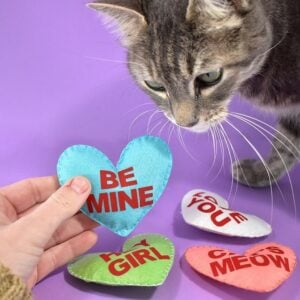 What a cute way to share Valentine's Day with your kitties! These adorable catnip conversation heart cat toys are adorable and filled with catnip!