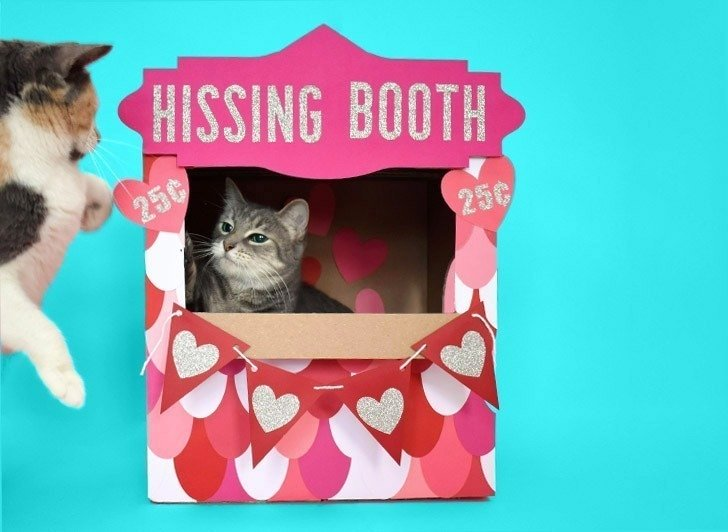 "Don't you just love this ""hissing booth"" cardboard cat hideaway? All you need is a moving box and some cardstock to make this adorable kitty play place."