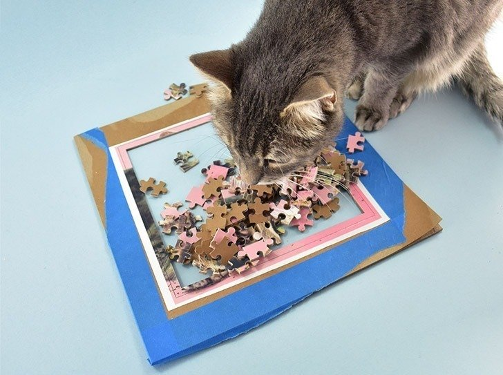 Turn your favorite photo into a puzzle! How cool is this?