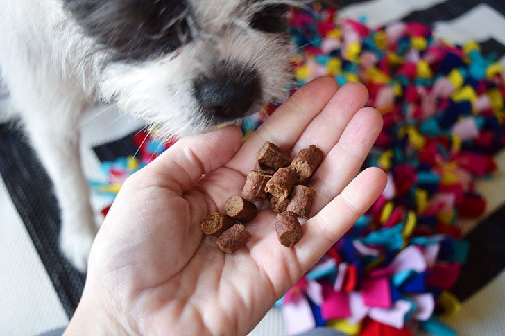 To use a snuffle mat hide away kibble or small treats into the furry fleece snuffle mat.