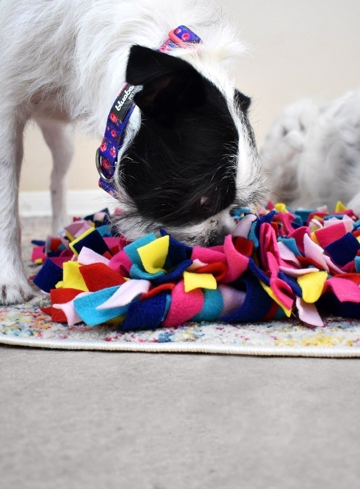 Allow your pets to sniff out their food hidden away in their snuffle mat as a way to play or slow down their eating habits.