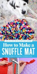 Does your dog eat too fast? It's something that can be really bad for your pet's health but luckily we can slow them down with this DIY snuffle mat!