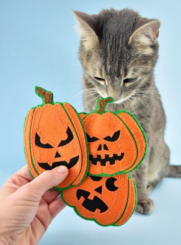 If your kitties love to play you're going to adore these DIY Felt Jack-O-Lantern cat toys you can make at home. Get the free SVG files to make your own!