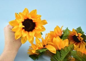 A variety of shapes and size sunflowers will add an interesting look to your sunflower Christmas tree.