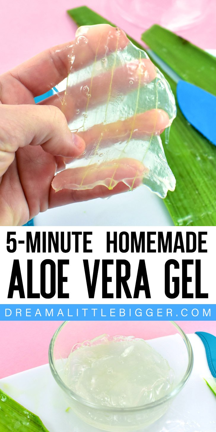 It only takes 5 minutes of effort to make homemade aloe vera gel. See how to make aloe vera gel with a trip to the plant nursery or grocery store.