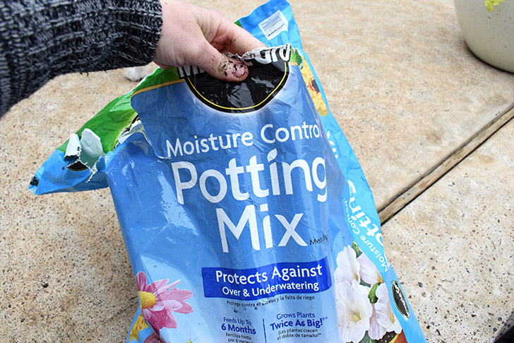 This potting soil is perfect for container gardens because it helps to prevent underwatering or overwatering. I don't know how it does it, but it's pretty genius!