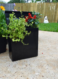 You don't have to go crazy with plants right away... After adding my Red Salvia and Creeping Jenny, I wanted to wait a bit to see how the plants filled out the container.