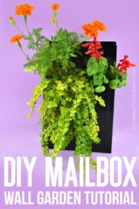 This Mailbox Planter is adorable and easy to create. Add a ton of charm to your porch with this tiny DIY gardening project!
