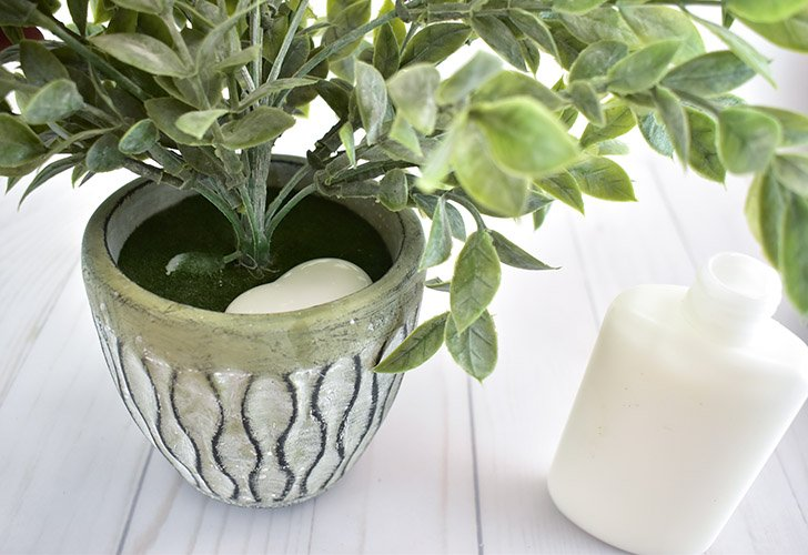 Pour your white school glue directly into the pot of the plant, on top of the foam or moss.