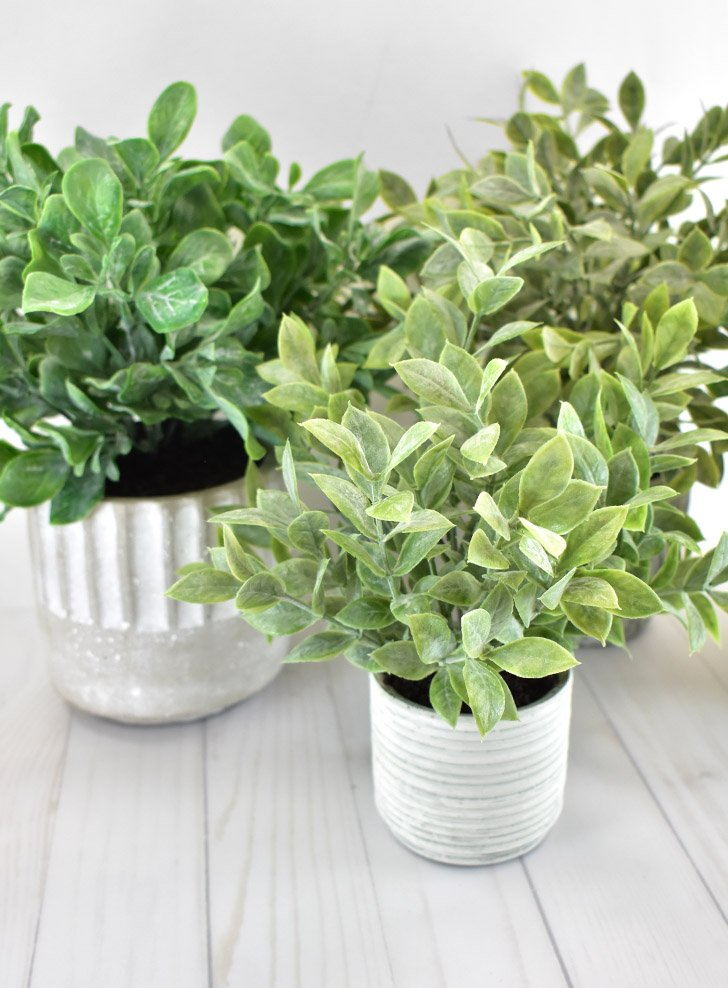 I love the look of plants in my home but after having dozens die I've decided to go artificial. See how I make fake plants look real!
