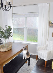 Want to keep prying eyes out but natural sunlight in? Learn how to apply privacy window film for the best of both worlds!