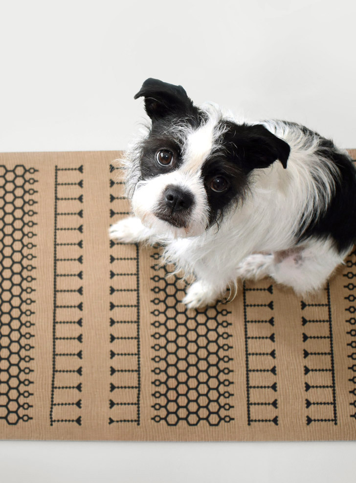 Isn't Carly the cutest dog? That DIY patterned rug is pretty spectacular, too!