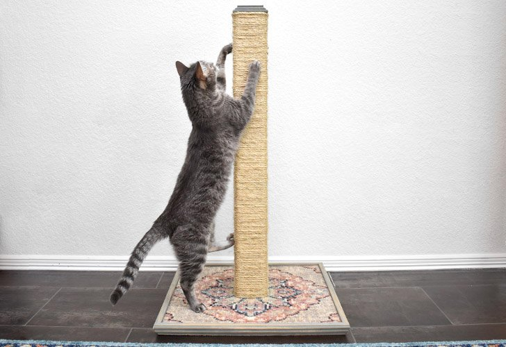 This DIY Cat Scratching Post lasts for years and is budget friendly and gives your cats something other than the sofa to scratch on!