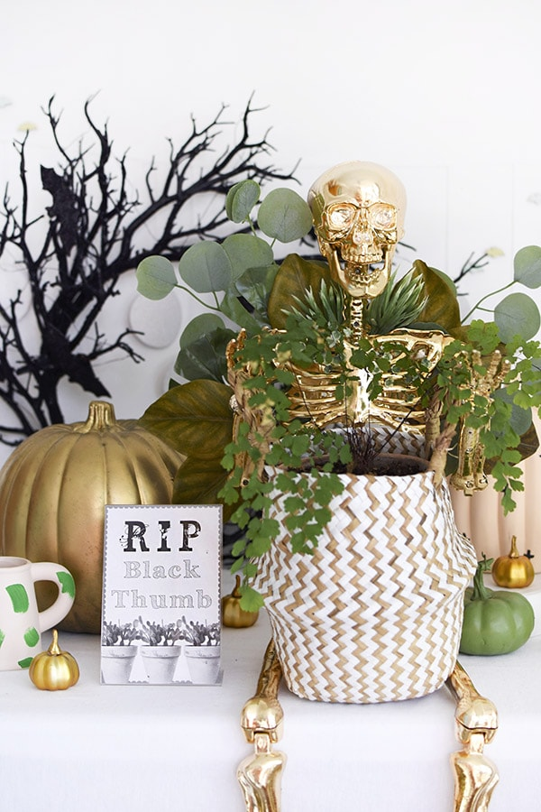 Halloween Crafts for Adults - Golden Plant Lady Skeleton by Delineate Your Dwelling