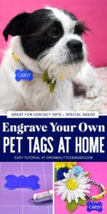 Engrave your own pet collar tags at home! It's the perfect way for special info. Want an email address instead of phone number? Done! Does your pet need medication? Add that, too!